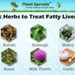 How To Treat Fatty Liver Naturally with Ayurvedic Herbs?