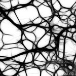 Treatment could offer hope for brain bleeding and stroke
