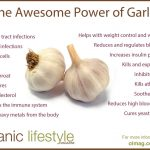 10 Health Benefits of Garlic (SCIENTIFICALLY PROVEN)