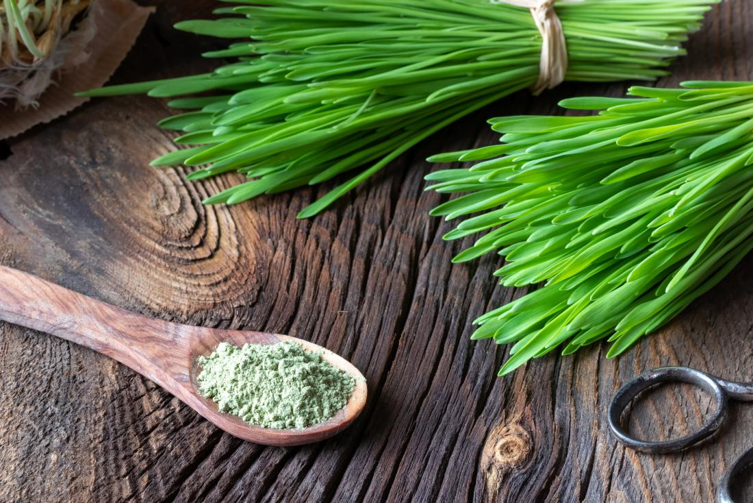 Barley grass powder on wooden spoon on wooden table with bunches of grass