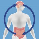 Brain-gut connection explains why integrative treatments can help relieve digestive ailments