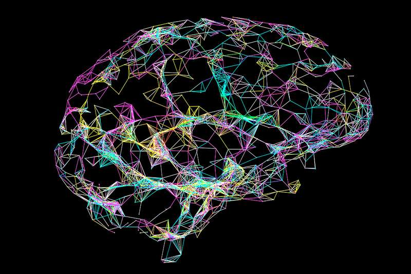 Multiple types of dementia affect brain function