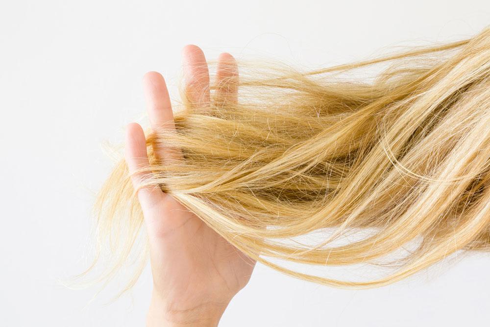 dry-hair-higher-nature.jpg