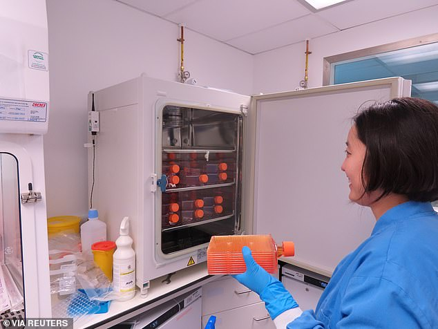 An incubator full of hyperflasks used in the development of the ChAdOx1 vaccine candidate at the Clinical Biomanufacturing Facility (CBF) in Oxford. Human trial for this vaccine will start in Britain on Thursday